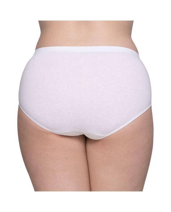 Plus size brief panties